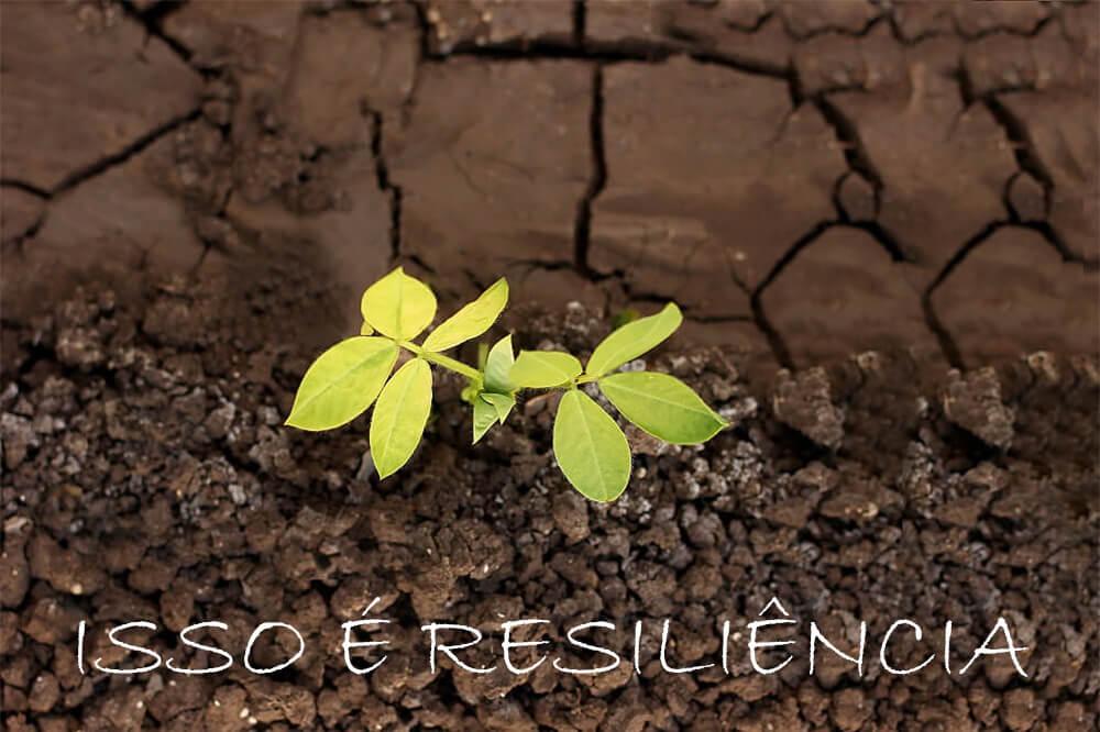 um exemplo de resiliência